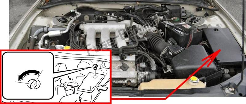 Расположение предохранителей в моторном отсеке: Mazda Millenia (2000, 2001, 2002)